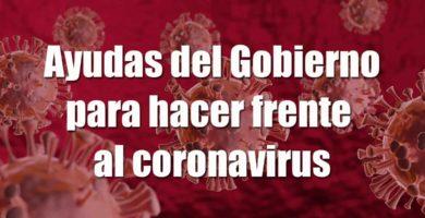 ayudas del gobierno por el coronavirus