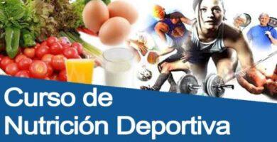 curso de nutrición deportiva gratis