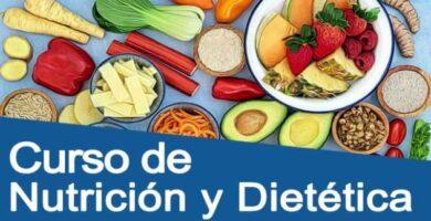 curso de nutricion grats online