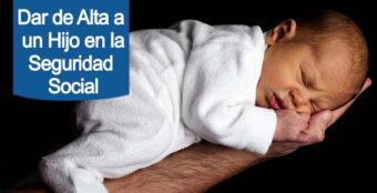dar de alta a un bebe en la Seguridad Social